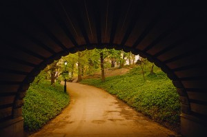 Path Through Tunnel