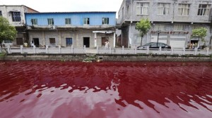 china-river-blood-300x168