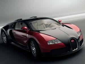 worlds-expensive-car-bugatti-veyron3